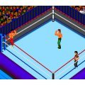 Fire Pro Wrestling: 2nd Bout
