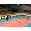 Volleyball World Cup: Venus Evolution