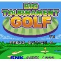 Big Tournament Golf
