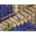 Sonic 3D: Flicky's Island