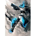 Black Rock Shooter Artbook: BLK Limited Edition ( figma BRSB Included)