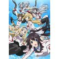 Infinite Stratos 2: Ignition Hearts [Limited Edition]
