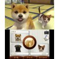 Nintendogs + Cats: French Bulldog & New Friends (Happy Price Selection)