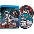 Akame Ga Kill!: Collection 2