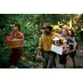 Captain Fantastic [Blu-ray+DVD+Digital HD]