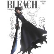 Bleach Arrancar Metsubo Hen 9 (Japan)