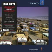 A Momentary Lapse Of Reason (US)