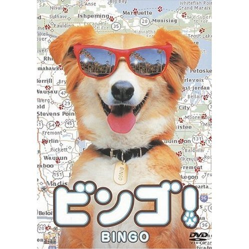 Bingo [Limited Pressing]
