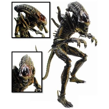 Movie Masterpiece Aliens 1/6 Scale Pre-Painted Fully Poseable Model: Alien Warrior (Brown)
