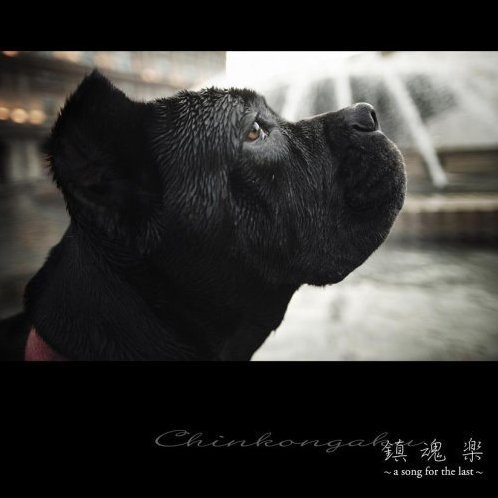 Chinkongaku -A Song For The Last-