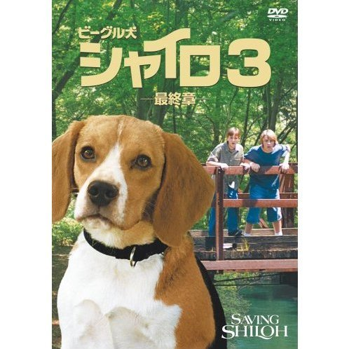 Saving Shiloh Special Edition