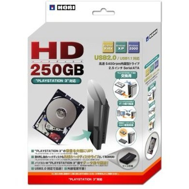 Hard Disk 250GB (with USB HDD case)