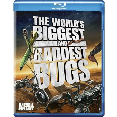 World's Biggest & Baddest Bugs