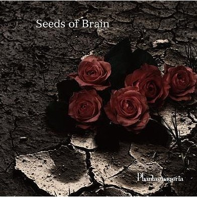 Seeds Of Brain [Limited Edition]