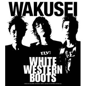 White Western Boots