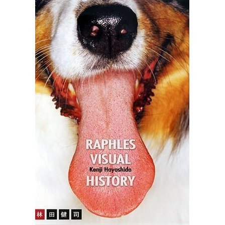 Raphles Visual History