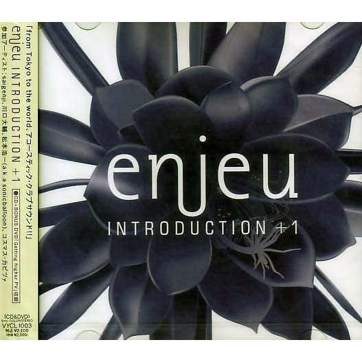 Introduction [CD+DVD]