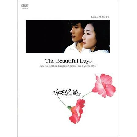 Beautiful Days - Visual Original Soundrack DVD