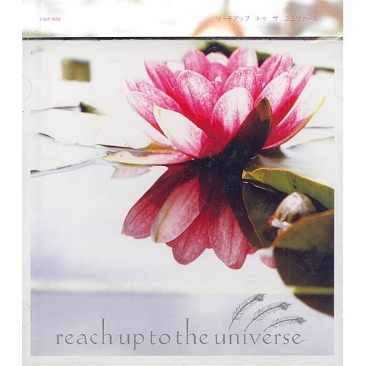 Reach Up To The Universe