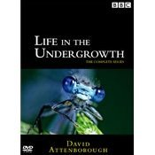Life In The Undergrowth [2-Discs Set]