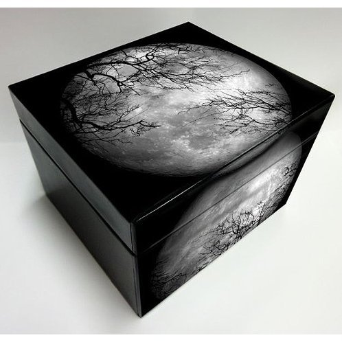 Luna Sea Premium Box [Limited Edition]