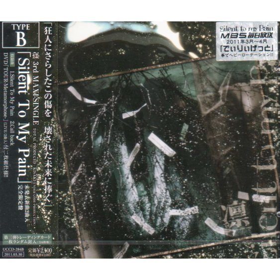 Silent To My Pain [CD+DVD Limited Edition Type B]