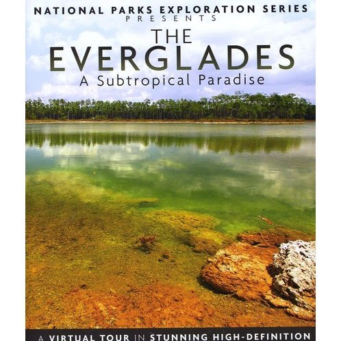 National Parks Exploration Series: The Everglades - A Sub-Tropical Paradise
