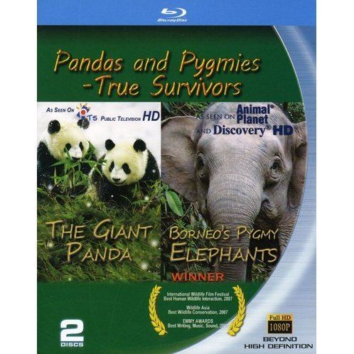 Pandas & Pygmies: True Survivors