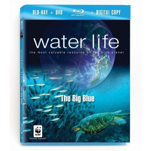 Water Life: The Big Blue