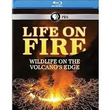 Life on Fire: Wildlife on the Volcano's Edge