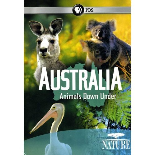 Australia: Animals Down Under
