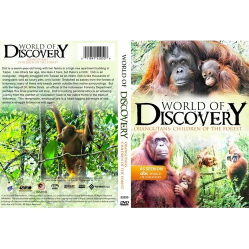 World of Discovery: Orangutans - Children of the Forest
