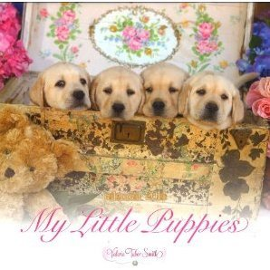 My Little Puppies [Calendar 2014]