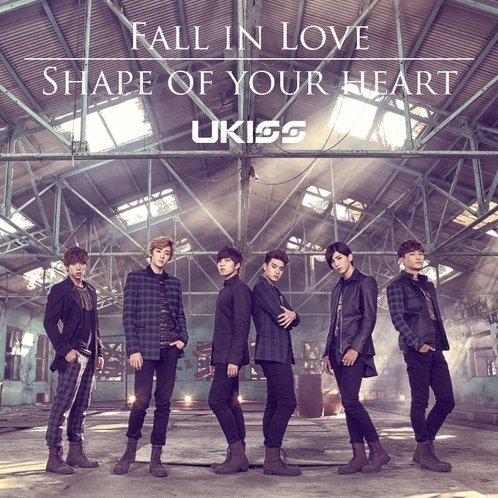 Fall In Love / Shape Of Your Heart [CD+DVD Limited Edition Type A]