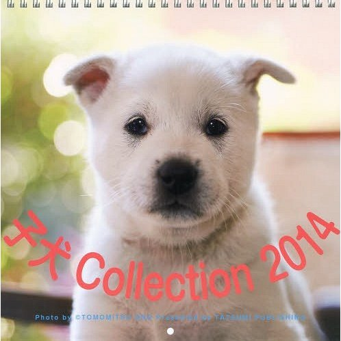 Koinu Collection [Calendar 2014]