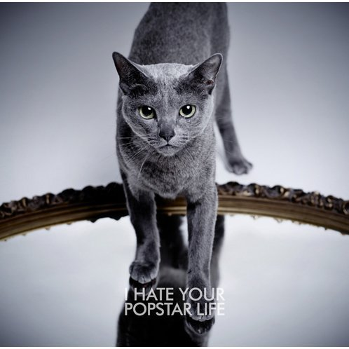 I Hate Your Popstar Life [CD+DVD Type B]