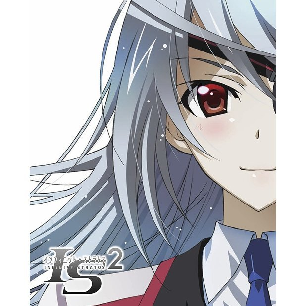 Infinite Stratos 2 Vol.5