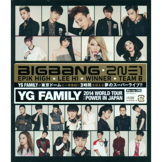 Yg Family World Tour 2014 - Power In Japan