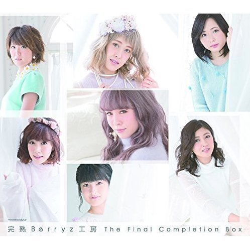 Kanjuku Berryz Kobo The Final Completion Box [3CD+2DVD Limited Edition Type B]