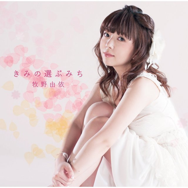 Kimi No Erabu Michi [CD+DVD Limited Edition]