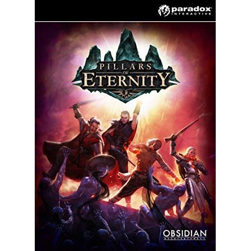 Pillars of Eternity - Hero Pre-order Edition (Steam)