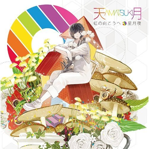 Niji No Muko E / Hoshizukiyo [CD+DVD Limited Edition]