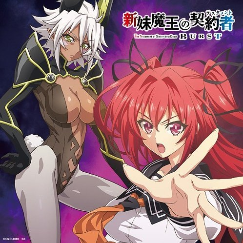 Over The Testament (The Testament of Sister New Devil Burst Outro Theme) [CD+DVD Limited Edition]
