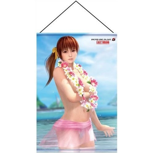 Dead or Alive 5 Last Round B2 Wall Scroll: Kasumi