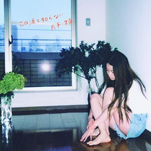 Kono Namida Wo Shiranai [Mini LP Limited Edition]