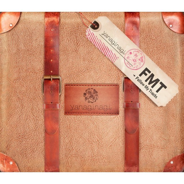 Follow My Tracks [2CD+DVD Limited Edition]
