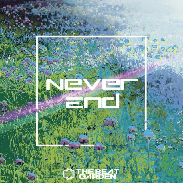 Never End [CD+DVD Limited Edition Type B]