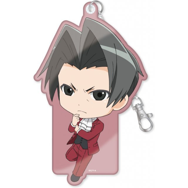 Ace Attorney - The Truth Objection! Diecut Pass Case: Mitsurugi