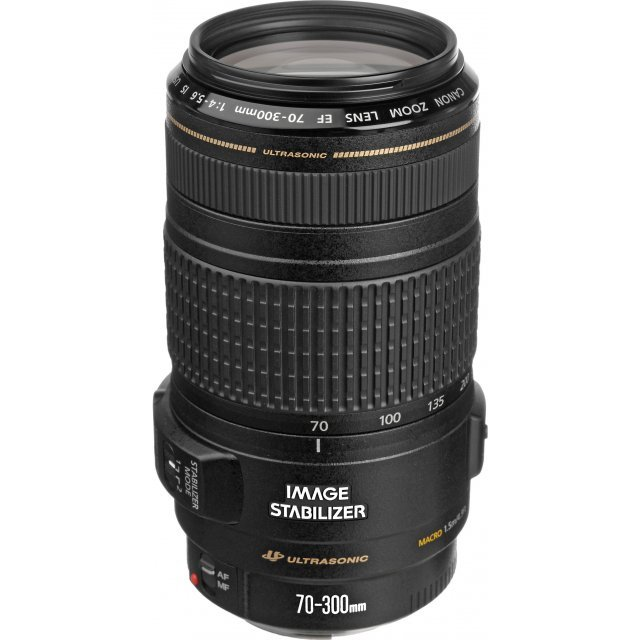 Canon EF 70-300mm F4.5-5.6 IS USM Lens
