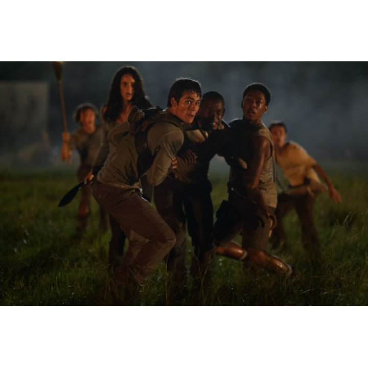 The Maze Runner [Blu-ray+DVD+Digital Copy+UltraViolet]